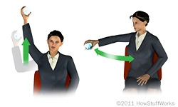 Image result for Water bottle curls in office