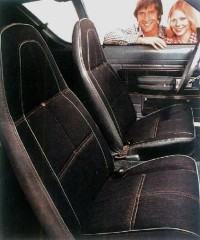 AMC used a blue nylon fabric with the Levi's familiar orange stitching, and brass buttons covered the seats and inner door panels.