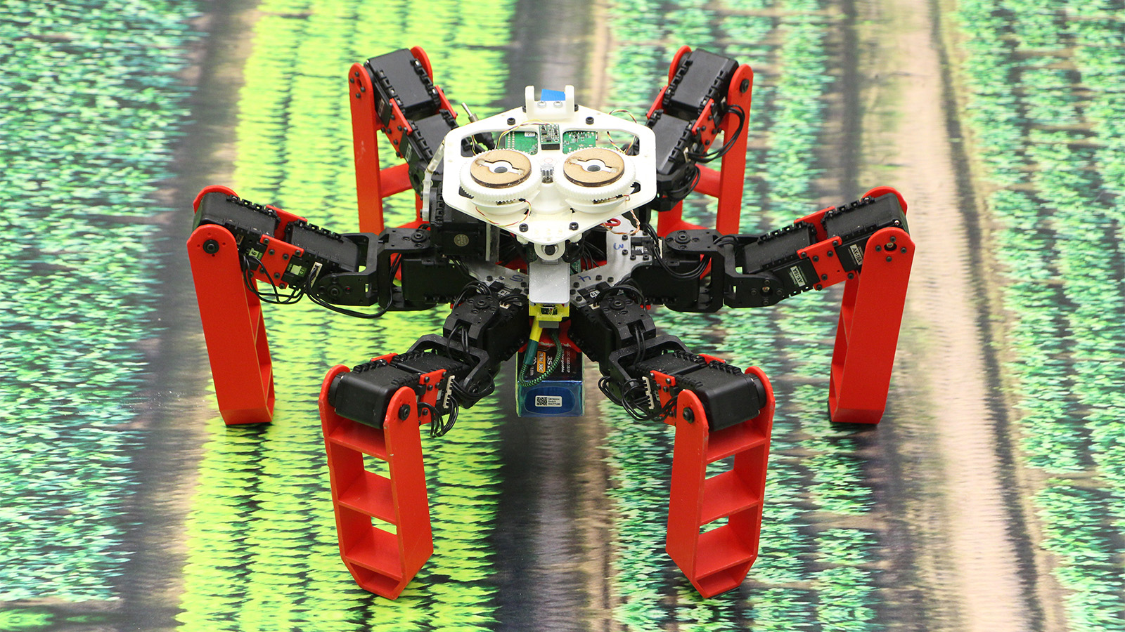 'AntBot' Uses Celestial Navigation Instead of GPS
