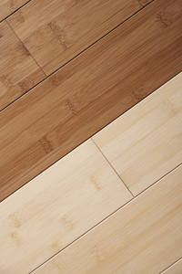 Ultimate Guide To Bamboo Flooring Howstuffworks
