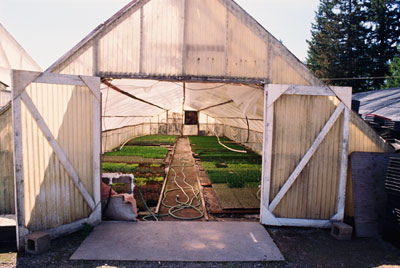 Picture of a greenhouse.