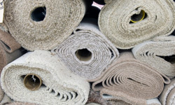 Should People With Allergies And Or Asthma Own Carpeting