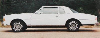 The 1979 Chevrolet Caprice Classic came standard with bodyside pinstriping.