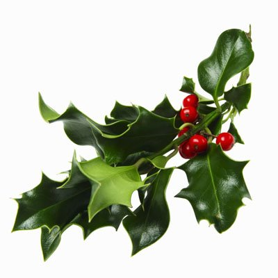 Increase your Christmas tree trivia knowledge with this tidbit: The mistletoe tradition dates back to the eighth century.