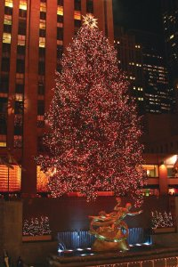 Increase your Christmas entertainment trivia knowledge with this fact: The Christmas tree at Rockefeller Center has more than 25,000 lights.