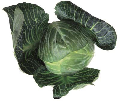 Collards are among the easiest vegetables to grow.