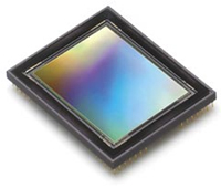 What are CCD or CMOS image sensors in a digital camera