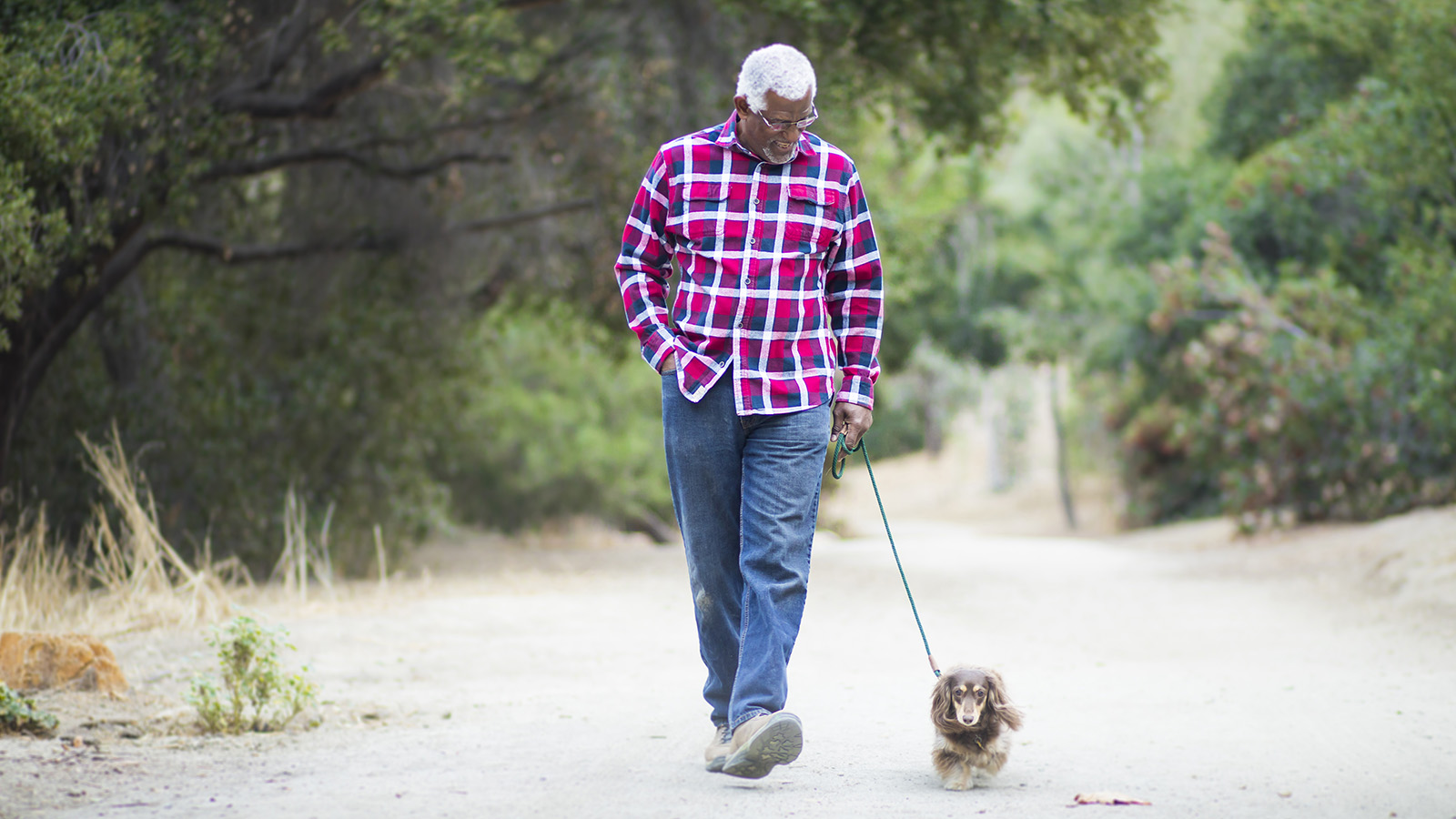 5 Tips for Walking Your Dog Safely