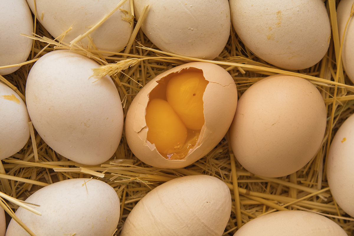 Why are people superstitious about double-yolked eggs