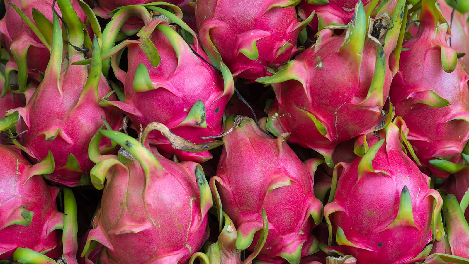 Why You Should Get Fired Up About Dragon Fruit