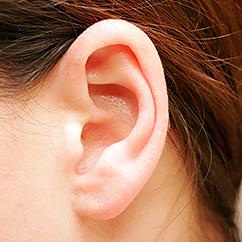 Ear Howstuffworks