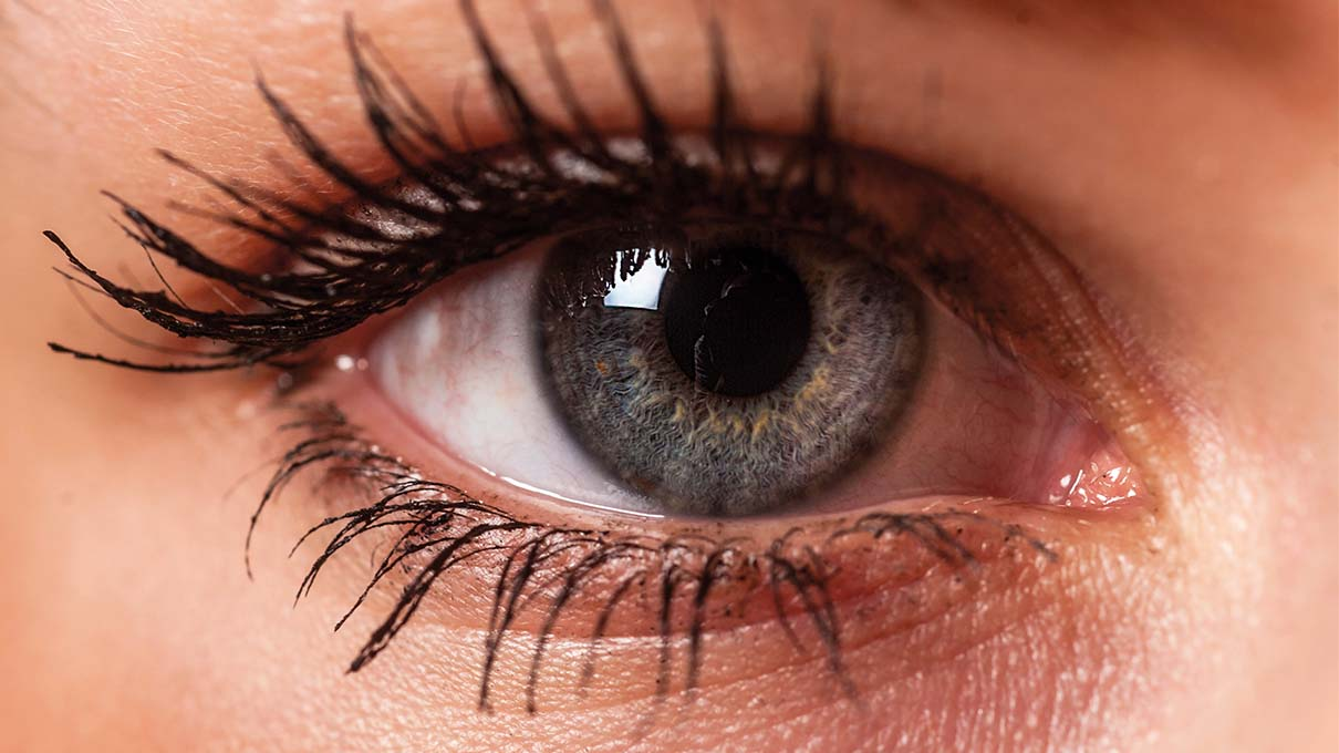 Attraction pupil dilation and Top Signs