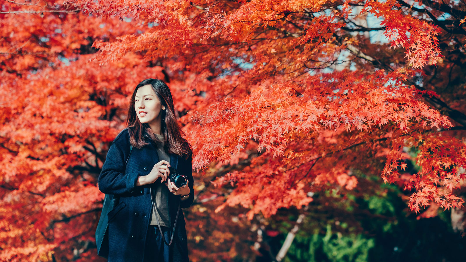 10 Fall Photography Ideas Howstuffworks