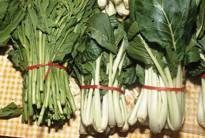 Green leafy vegetable are rich in folate.