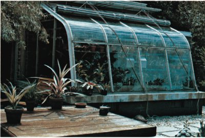 Whether an elaborate greenhouse or just a simple window, orchids enjoy the cooler temperatures and circulating air near a window.