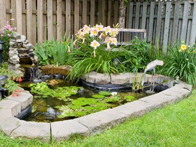 Pond Building Instructions | HowStuffWorks