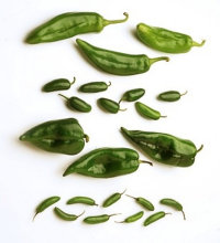 Anaheim, Jalapeno, Poblano, and Serrano chilies are used in Mexican cooking.
