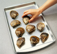 Refrigerate the oysters for an hour and give them a chance to relax.