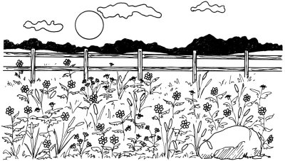 How to Draw a Field of Flowers in 5 Steps