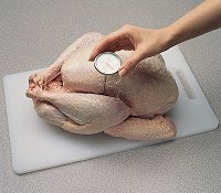 When grilling turkey, insert the meat thermometer into the thickest part of the thigh.