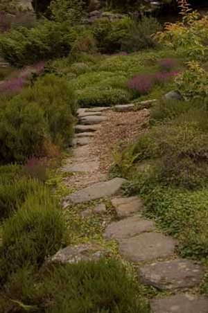 A garden pathway edged with ornamental grasses is peaceful and inviting.