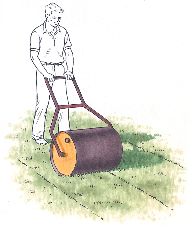 Roll new sod with a lawn roller to ensure roots come in contact with the soil.