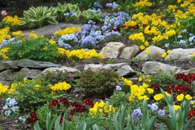 Planting a Rock Garden - Growing a Rose Garden | HowStuffWorks