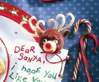 Here is a finished Pom Reindeer Magnet.