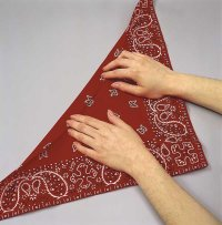 Fold the bandana in half, cross-wise, to make a triangle.