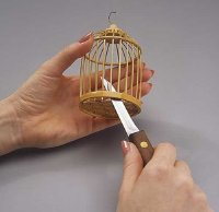 Using a knife, remove the bottom of the cage.