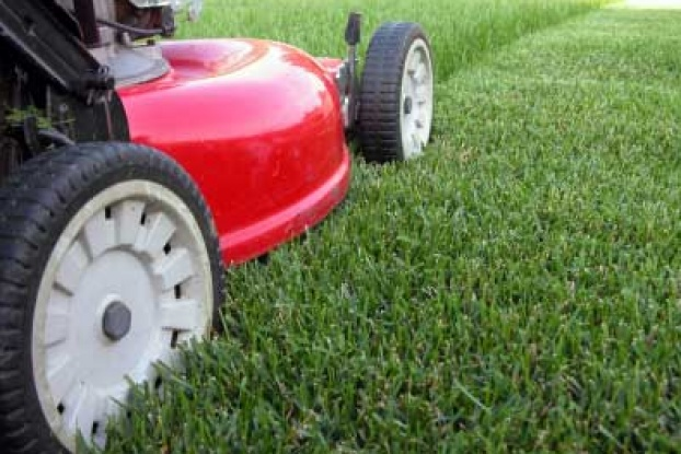 Low Maintenance Lawn Care Services in ...