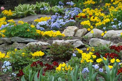 About Rock Gardens Howstuffworks