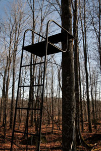 Setting Up The Tree Stand Howstuffworks
