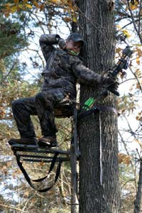 Picking A Tree Stand Location Howstuffworks