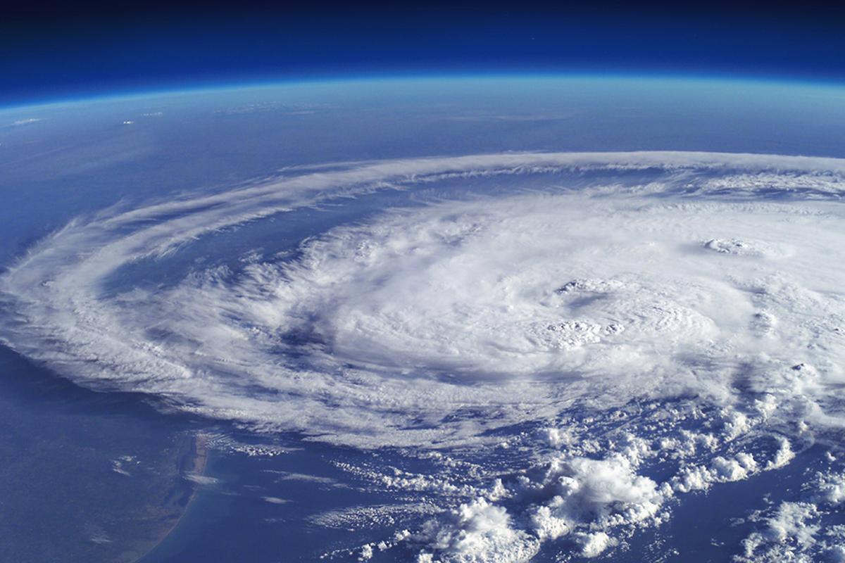 The Hurricanes