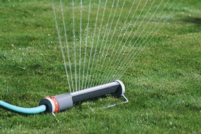 Water will help you grow a lawn.