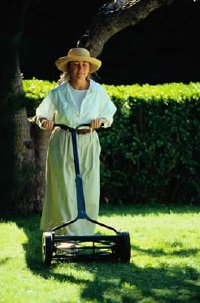 Look for lawn problems as you do regular maintenance.
