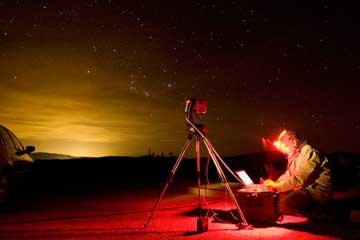 The Dark Side of Light Pollution: Animal Effects | HowStuffWorks