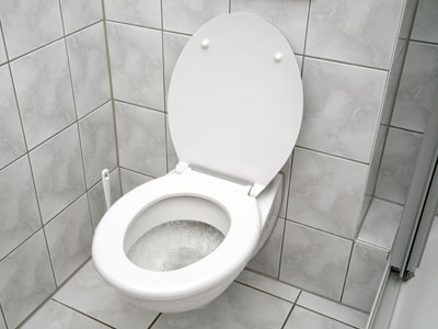 Ultimate Guide To Low Flow Toilets Howstuffworks
