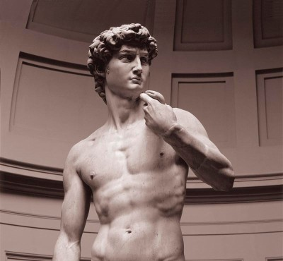 Michelangelo's David, Detail Torso