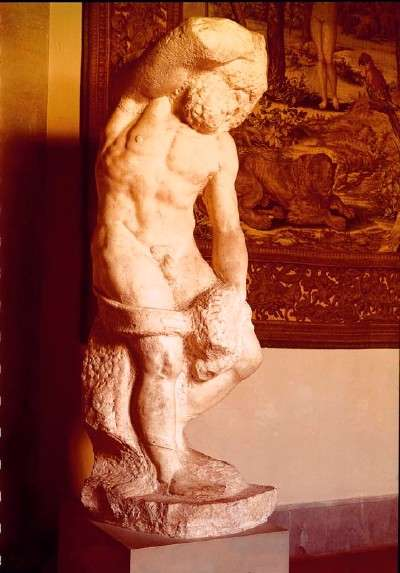 Michelangelo's Bearded Slave