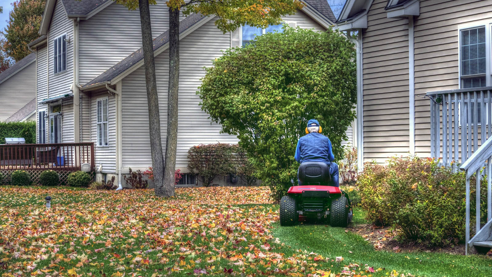 Why You Should Stop Raking Fall Leaves, Stat!