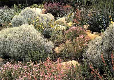 Southern California Garden Ideas | HowStuffWorks
