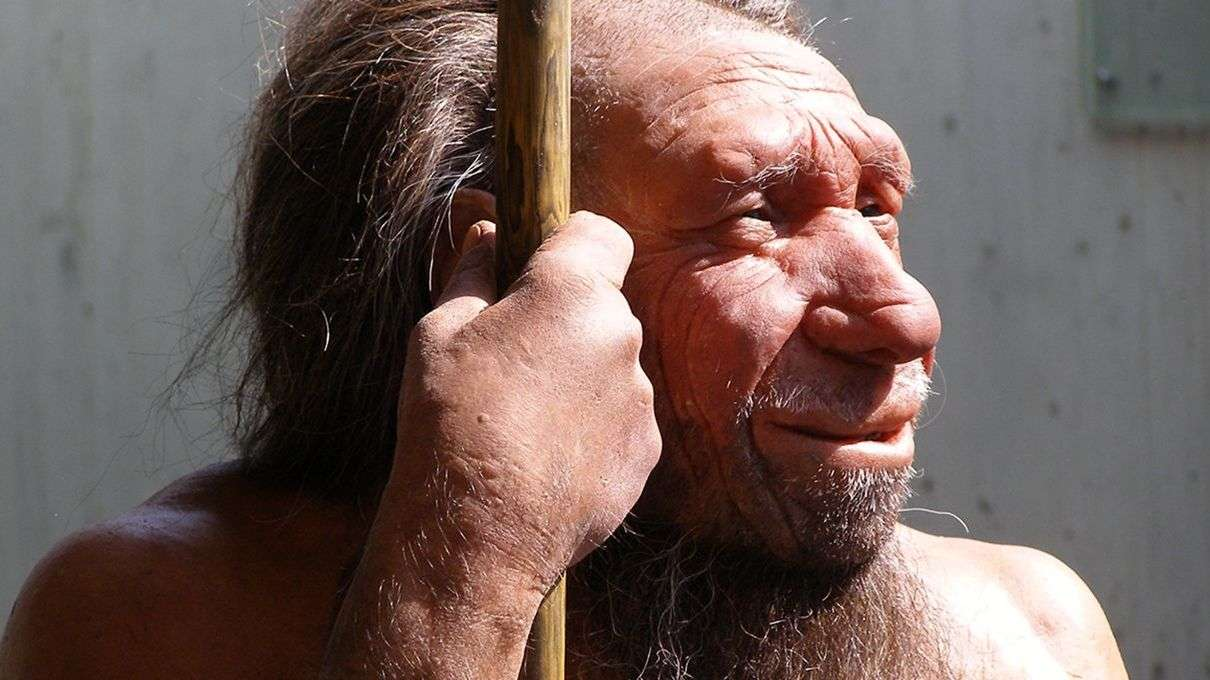 Image result for Modern man thinks with his caveman brain cartoon