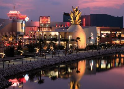 Downtown Disney offers a variety of nightlife and entertainment options, including the Cirque du Soleil La Nouba show.