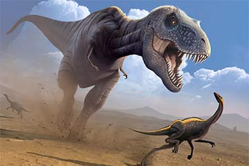 Could You Really Outrun A Tyrannosaurus Rex Howstuffworks