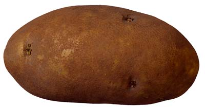 Good baking potatoes are large and brown with dry skin.