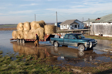 Brian Wesner walks around his truck and load of hay parked in high floodwaters. Wesner had the hay stored in the buildings for his 200-plus head of cattle.