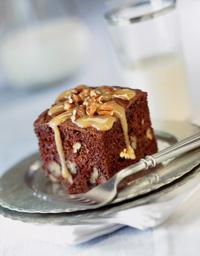 Tortoise Snack Cake