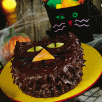 Scaredy Cat Cake